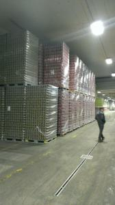 Obisk pivovarne Union (23)