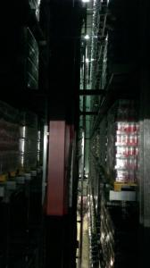 Obisk pivovarne Union (27)